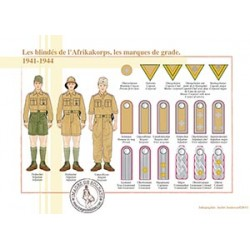 Les blindés de l'Afrikakorps, les marques de grade, 1941-1944