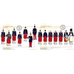 L'Infanterie de Ligne, 1860-1868