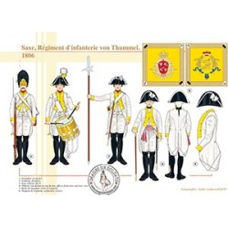 Saxe, Régiment d'infanterie von Thummel, 1806