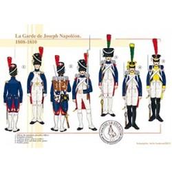 La Garde de Joseph Napoléon, 1808-1810