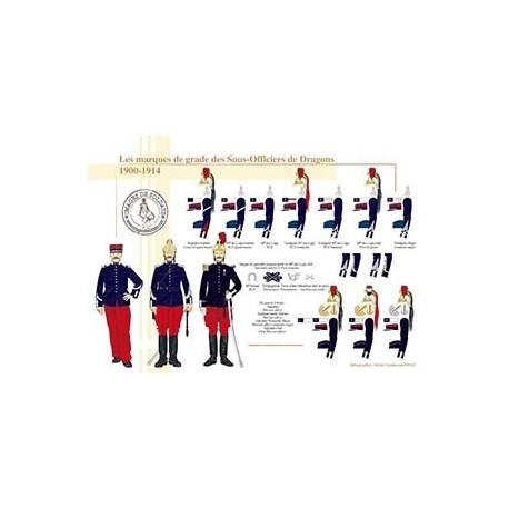 Les marques de grade des Sous-Officiers de Dragons, 1900-1914