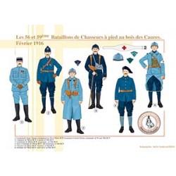 Les 56 et 59ème Bataillons de Chasseurs à pied au bois des Caures, février 1916