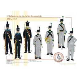 L'Infanterie du duché de Brunswick, 1814-1815