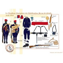 Le Tirailleur Sénégalais à la Mobilisation, Revue de détails, Août 1914