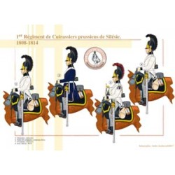 1er Régiment de Cuirassiers prussiens de Silésie, 1808-1814