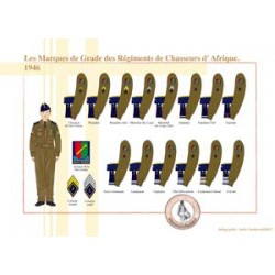Grade Marks of the Regiments of African Hunters, 1946