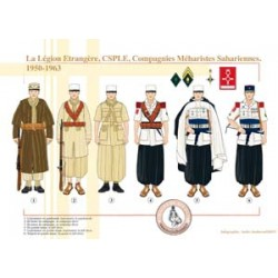 The Foreign Legion, CSPLE, Saharan Meal Companies, 1950-1963