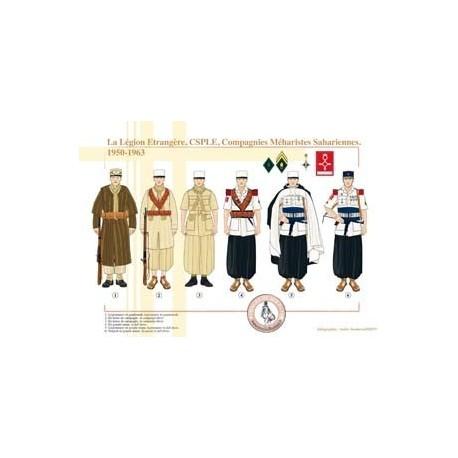 The Foreign Legion, CSPLE, Saharan Meal Companies, 1950-1963