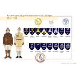 Les marques de grade des chasseurs d'Afrique, 1941-1944