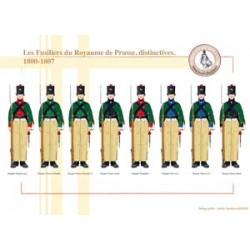 Les Fusiliers du Royaume de Prusse, distinctives, 1800-1807