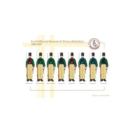 Les Fusiliers du Royaume de Prusse, distinctives, 1800-1807