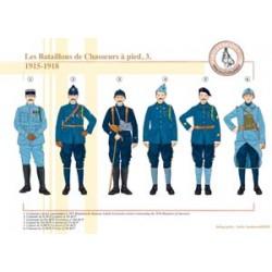 Die französischen Fußjäger-Bataillone (3), 1915-1918