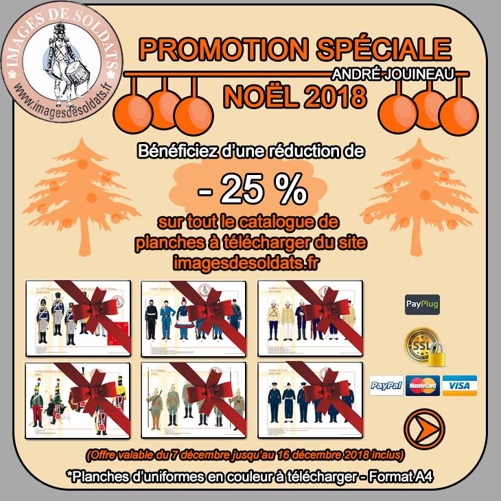 Offre spéciale Noël 2018 : -25% sur toutes les planches IDS Visuel-promotion-noel-2018